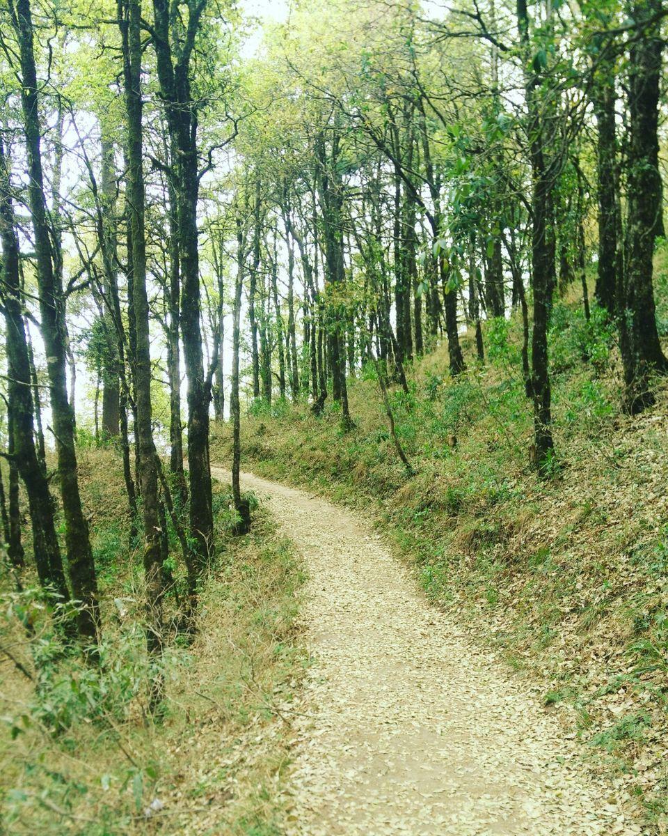 Photos of Off the beaten path in Uttarakhand 1/1 by Ridhíma Prasad