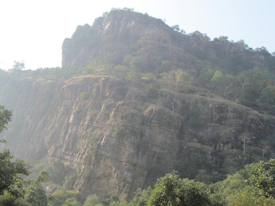 Photos of Ranthambore National Park, Prempura, Rajasthan, India 3/4 by Prahlad Raj