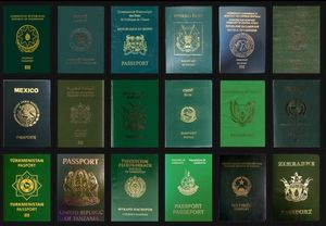 Why is the Indian passport blue?