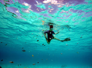 Snorkelling In India: A Know-It-All Guide To The Next Big Thing In Water Sports