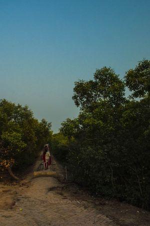 Diary 7 : Henry's Island : Kolkata's almost private beach !