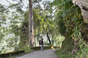 Gomukh, Tapovan - Surge of adventure at the edge of spirituality