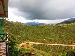 Valparai: a conflict zone or tranquil getaway?