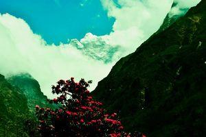 Tengboche Monastery 1/30 by Tripoto