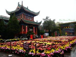 Kaifeng Daxiangguo Temple 1/4 by Tripoto
