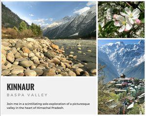 A solo trip to Kinnaur - Kalpa, Rakchham and Chitkul