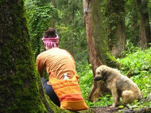 How I screwed up in Kasol in my bipolar disorder's high phase