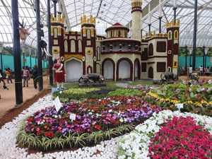 Lalbagh Independence Day Flower Show 2015- Bangalore