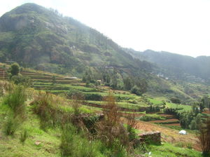 Ooty-Unravelling mysteries of Queen of the Hill