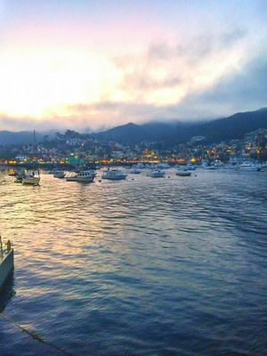 Tiana's Perfect Day on Catalina Island