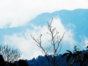 From Lake to Mountains of God (Sandakphu Trek)