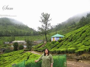 Sam's Kerala Travel Diary