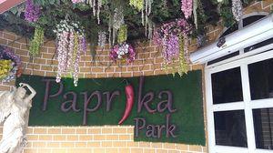 Paprika Park- a quality restaurant at Habitat center Indirapuram  - Dream dining..