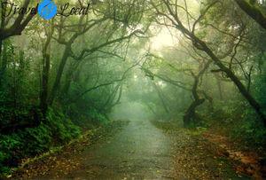 Weekend Destination – Panchgani