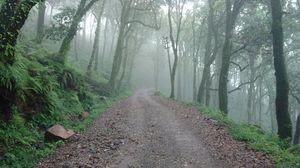 PANGOT: Hidden Gem of Nainital