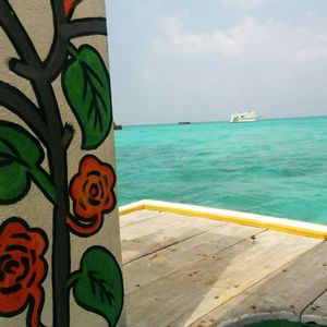 The cure for anything is salt water : sweat, tears or The Sea ...My journey to Lakshadweep