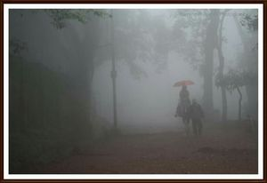 Matheran ... A world within.