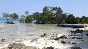 Andamans: Rediscovering a bond