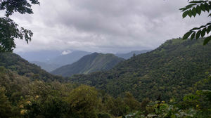 We've Found The Perfect Alternative To Munnar And It Has Become Our Favourite Hill Station in Kerala