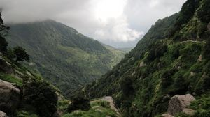 Triund trek - Paradise for beginners