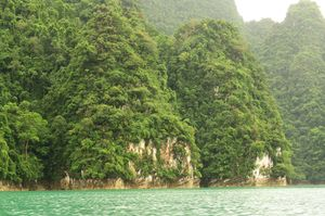 Khao Sok National Park, Thailand, nature at its best