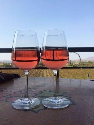 Sula Vineyards - because there is always time for a glass of good wine