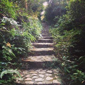 Hiking MacLehose Trail in Hong Kong Pt 1