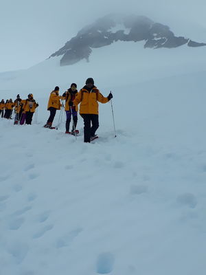 Surreal Vistas of the 7th Continent :Antarctica