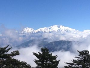 Sandakphu - Of misty roads and grand vistas, and a sweet surprise!