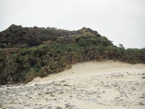 Zamini Island 1/1 by Tripoto
