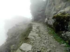 Trip to the  Mini Switzerland (Chopta)