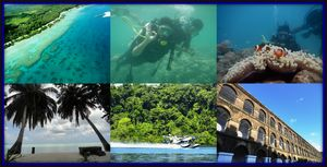 Andamans-A Nature Lover's Paradise