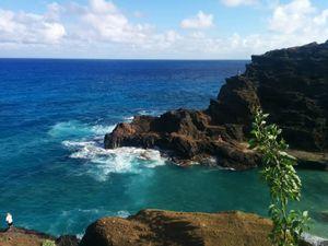 Paradise Hawaii