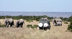 Ultimate Kenyan Safari 6 Nights / 7 Days, starting from ` 119,990 /- per person