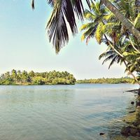 Kavvayi Island 2/2 by Tripoto