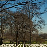 Arlington National Cemetery 3/3 by Tripoto