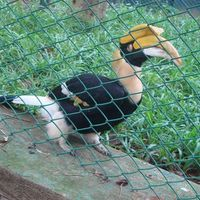 Bannerghatta National Park 2/29 by Tripoto