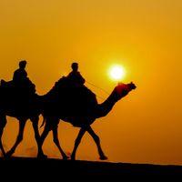 Sam Sand Dunes Desert Jaisalmer 3/66 by Tripoto