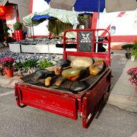 Zhenping Jade Market 2/14 by Tripoto