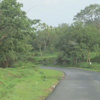 Bandipur National Park and Tiger Reserve 2/56 by Tripoto