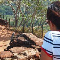 Sigiriya Rock Fortress 3/13 by Tripoto