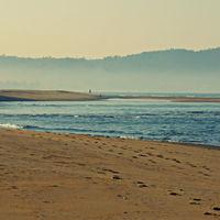 Ravindranath Tagore Beach 2/4 by Tripoto