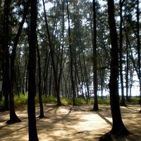 Jampore Beach 2/9 by Tripoto