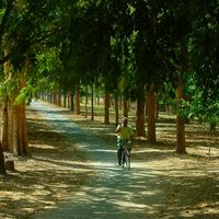 Chandigarh Rose Garden 4/5 by Tripoto